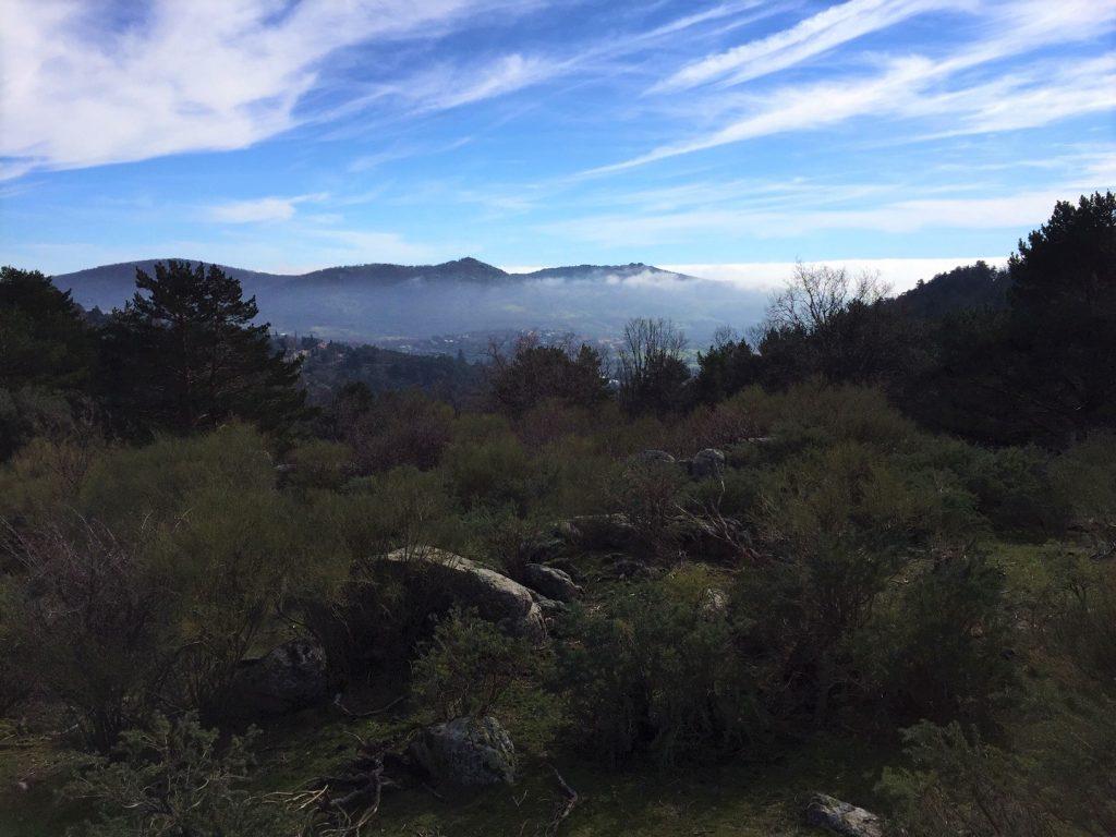 Cercedilla hiking Madrid foraging