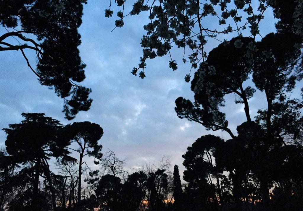 Retiro Park Unexpected beauty