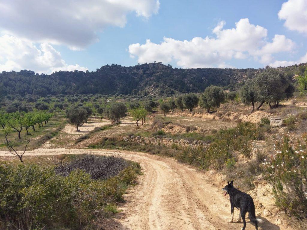 off-grid Spain