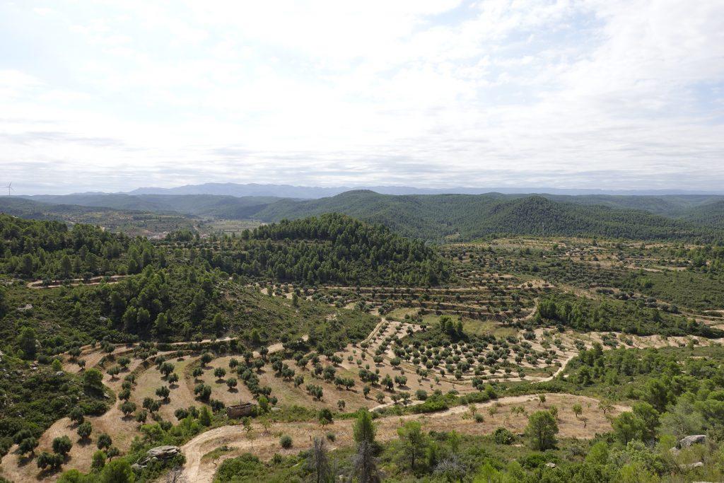 empty Spain
