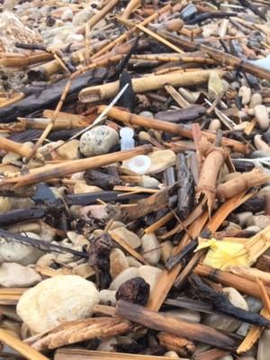 plastic pollution in the sea