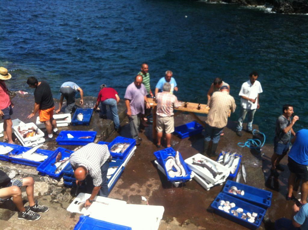 Fish market in the Azores