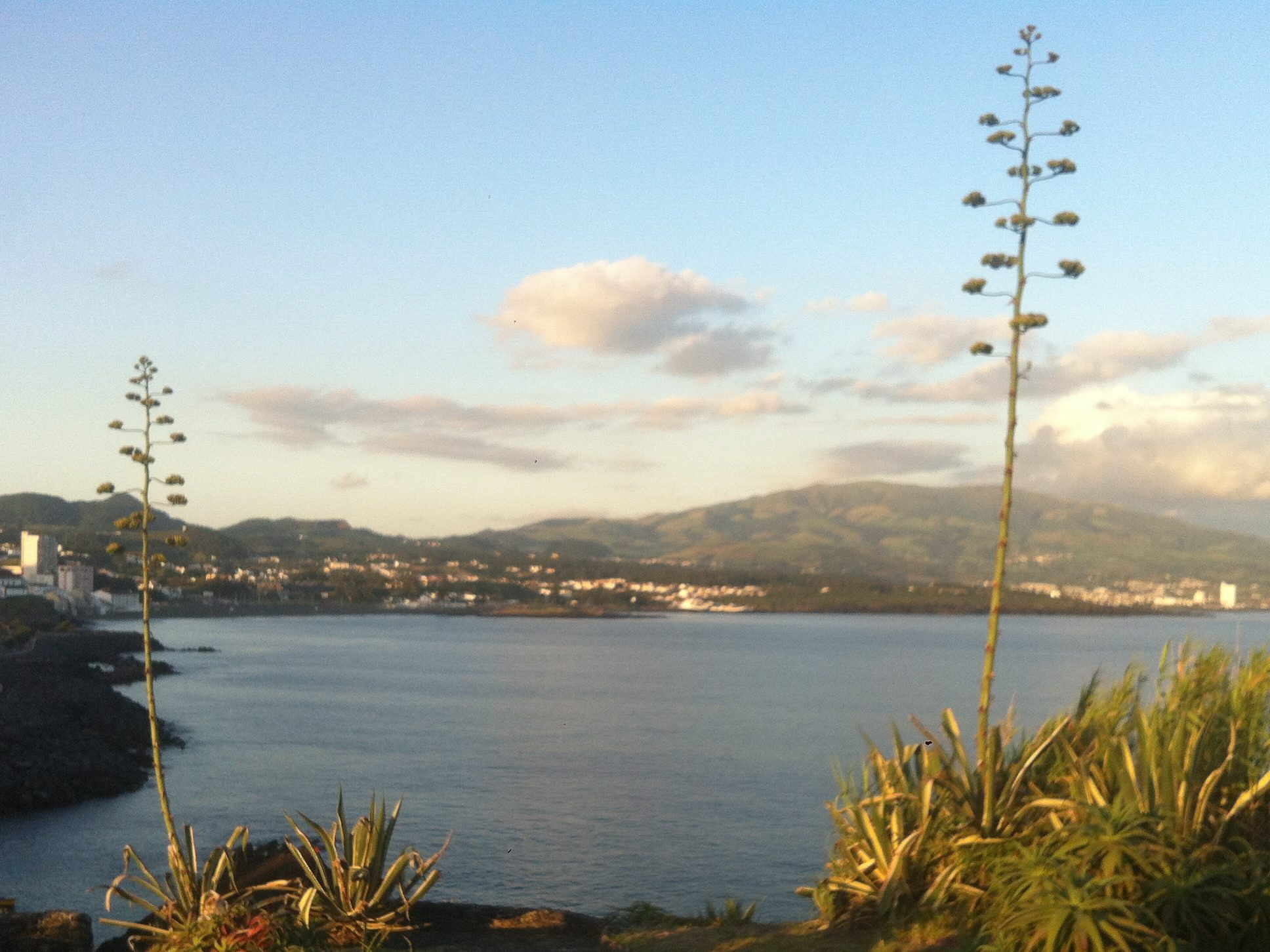 travel in the Azores