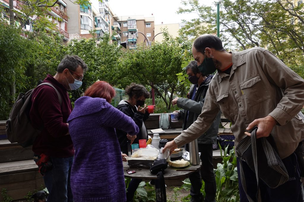 Stakeholder interviews in community garden