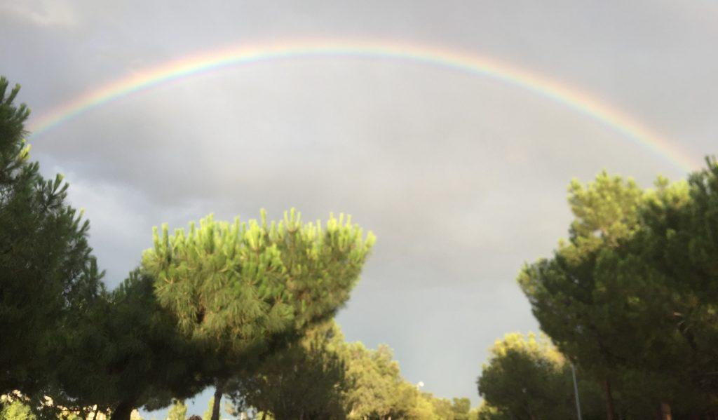 Rainbows Madrid